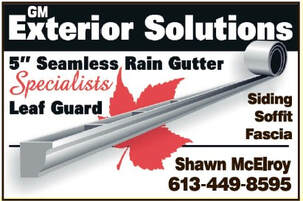 GM Exterior Solutions, Rain Gutter Siding etc     Elgin       359-5159